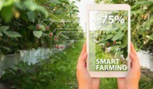 IoT-Auro-smart-agriculture